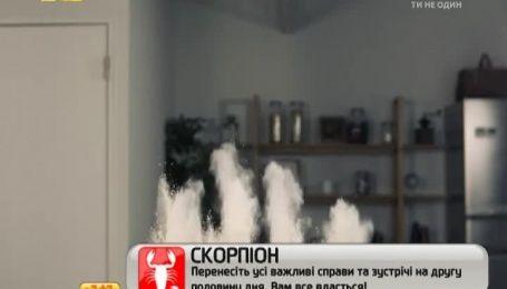 Гумористичний ролик про миттєве приготування креветок потішив Інтернет