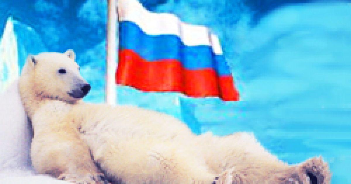 породы дюрок картинка белый медведь с флагом россии мне вчера