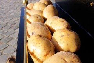 Росія забороняє кримчанам їсти українську картоплю