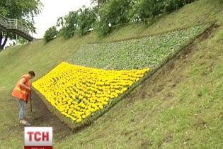 У Києві з'явився найбільший квітковий прапор України