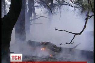 """Спричинені бойовиками лісові пожежі безжально випалюють """"легені"""" Донбасу"""