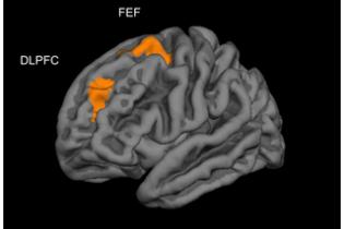 Ученые доказали пользу компьютерных игр для развития головного мозга