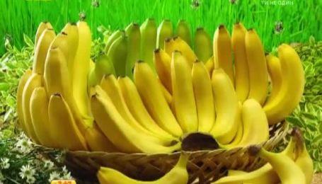 В США ученые создали бананы, которые могут улучшить зрение