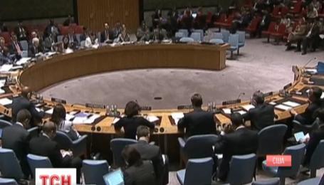 Результати президентських перегонів в Україні схвалили члени Ради Безпеки ООН