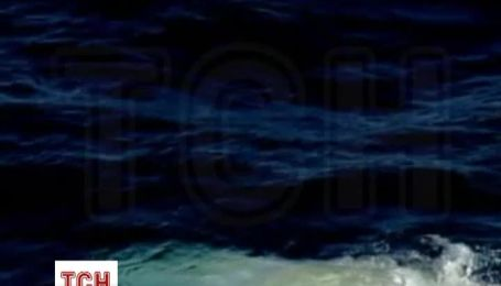Біля Австралії вдалося відзняти кита-альбіноса