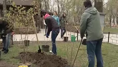 """Ведущие """"1+1"""" посадили 10 кустов калины"""