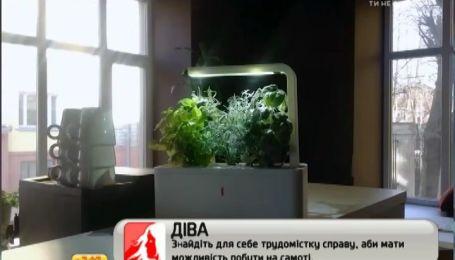 """Американці створили """"вазон"""", який сам вирощує городину"""