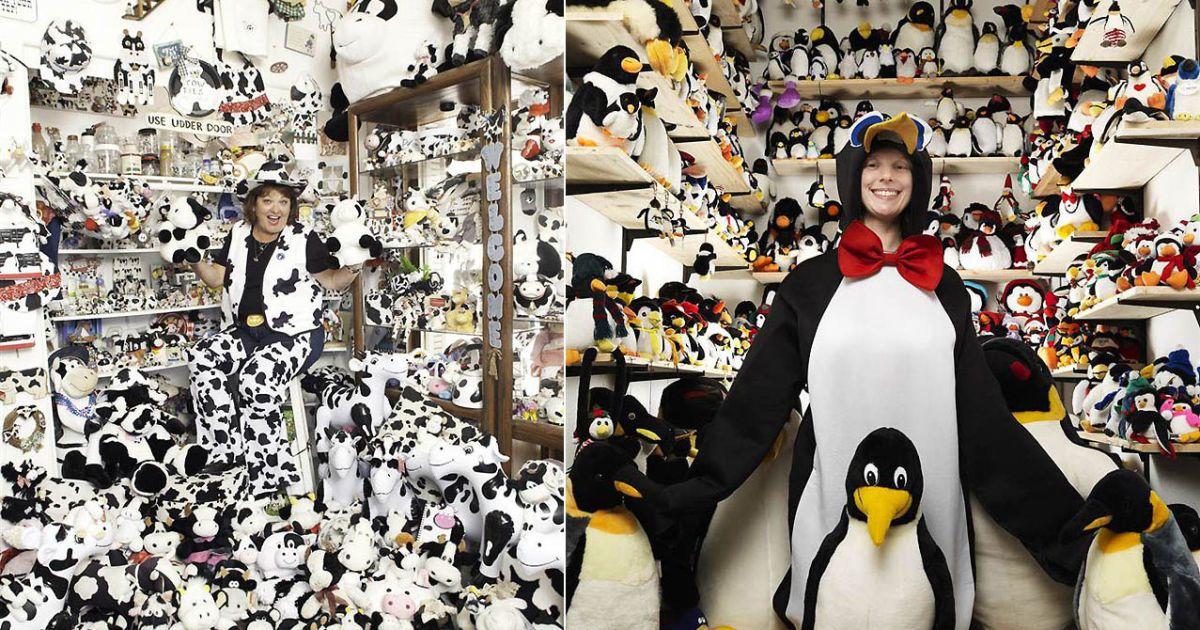 Найбільша колекція корів належить Деніс Тубангі зі США (2429 корів). Найбільша колекція пінгвінів — у Бріджит Берендс з Німеччини (11062 предметів) @ Guinness World Records