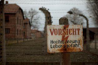 Кожен п'ятий молодий німець нічого не знає про Освенцим