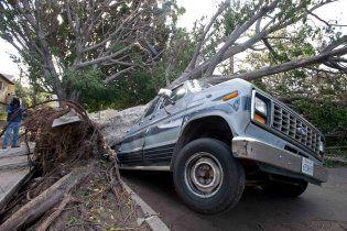 Ураган у Каліфорнії повалив сотні 30-метрових дерев