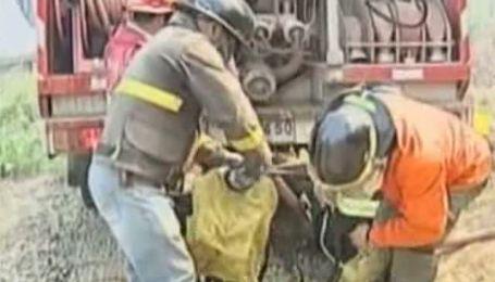 В Чили продолжают бушевать лесные пожары