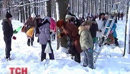 В Кировограде школьники помогают птицам пережить зиму