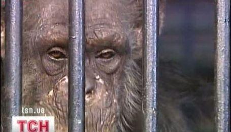 Минэкологии хочет прибрать к рукам киевский зоопарк