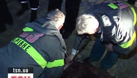 В аварії у Рівному загинуло 9 осіб