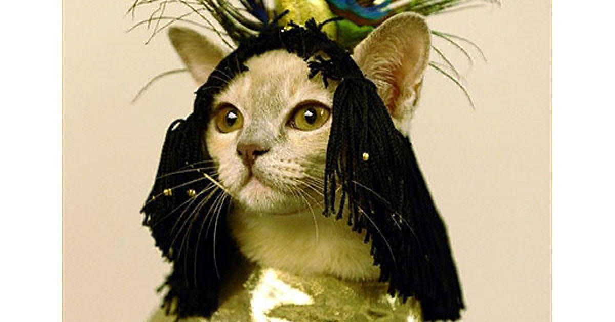 В рамках виставки також провели конкурс на найкращий костюм серед кішок @ AFP