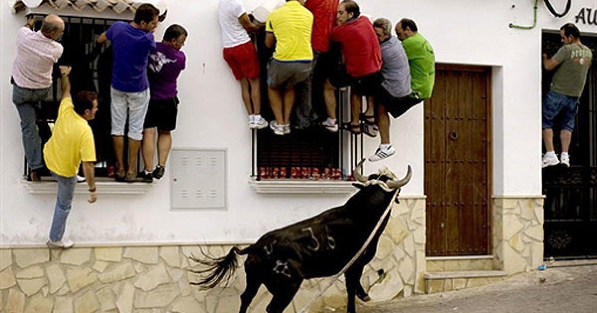 """Іспанія, Вільялуенга-дель-Росаріо. Люди намагаються утікти від розлюченого бика під час свята Bull Rope (""""канат для бика""""). @ AFP"""