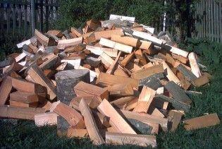 В Беларуси выдают зарплату дровами