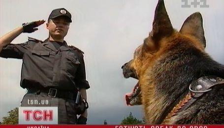На Львовщине к Евро-2012 готовят собак