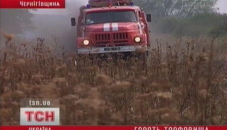 В Украине пик пожаров