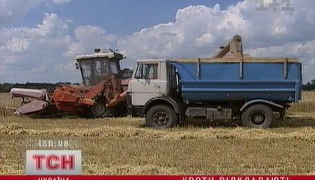 Обмеження експорту зерна відкладається