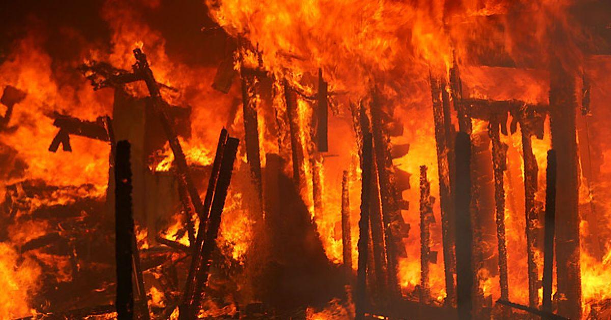 forest fires descriptive essay