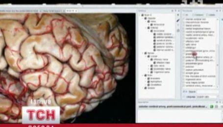 4D - анатомія