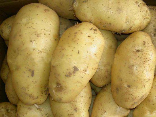 Оптова ціна картоплі підскочила посеред зими