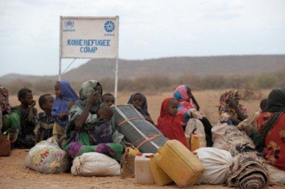 Голод в Сомалі_10