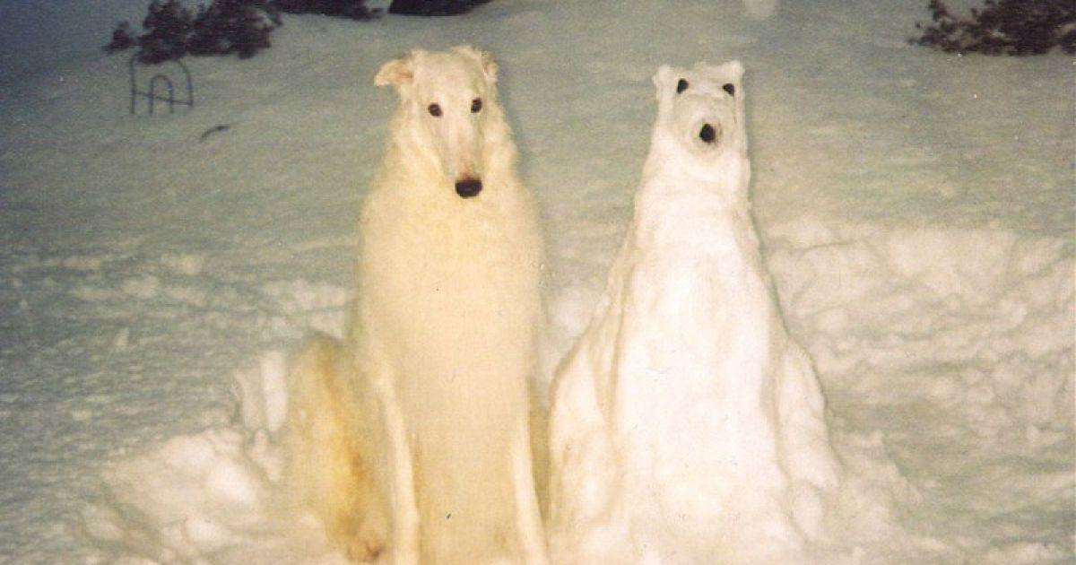 Люди з усього світу ліплять зі снігу героїв мультфільмів та своїх домашніх тварин. @ bigpicture.ru