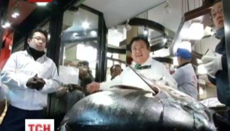 В Токио гигантского тунца продали за 70 тысяч долларов