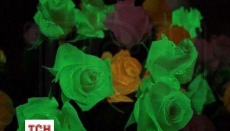 В Эквадоре предлагают флуоресцентные розы, которые светятся в темноте