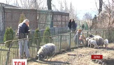 Від голоду в Харківському зоопарку з понеділка почнуть гинути тварини