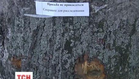 На улицах Киева, где велись бои, работают эксперты-криминалисты