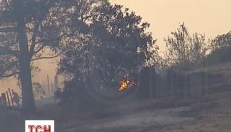 Лесные пожары уничтожили десятки домов в Австралии