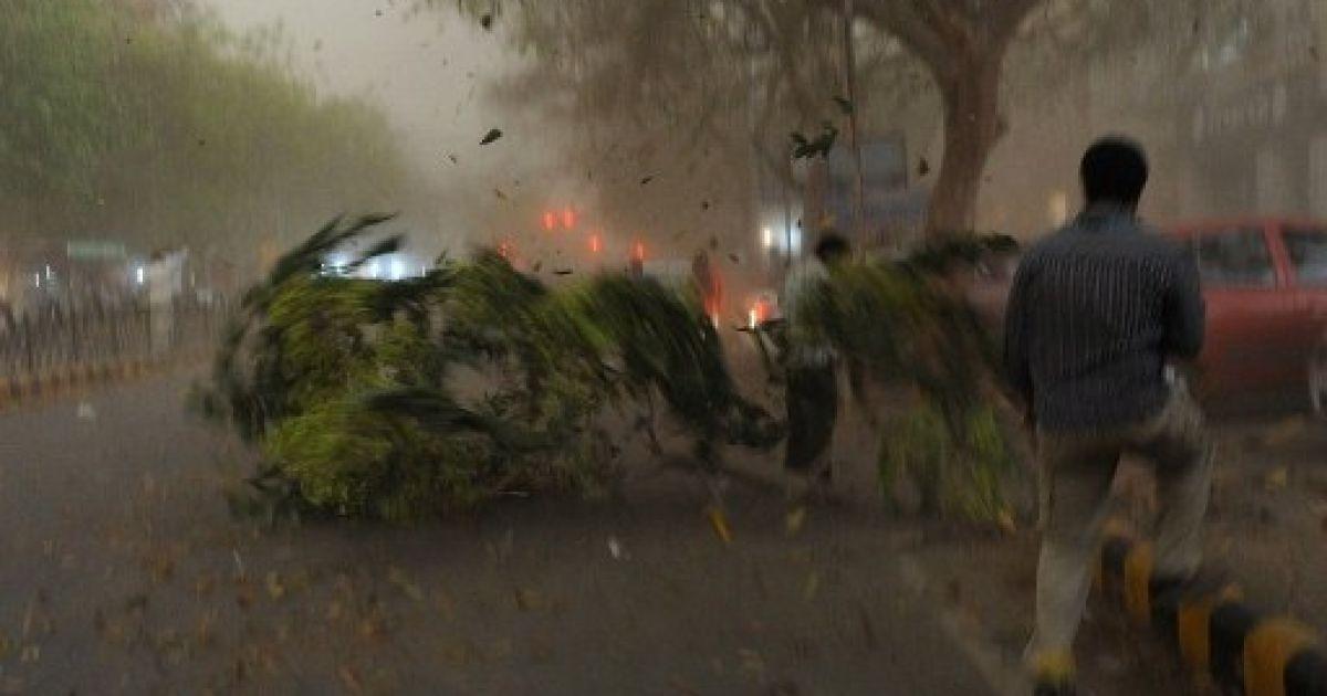Індія, Нью-Делі. Шквальний вітер повалив дерева під час потужної піщаної бурі та раптової грози в Нью-Делі. @ AFP