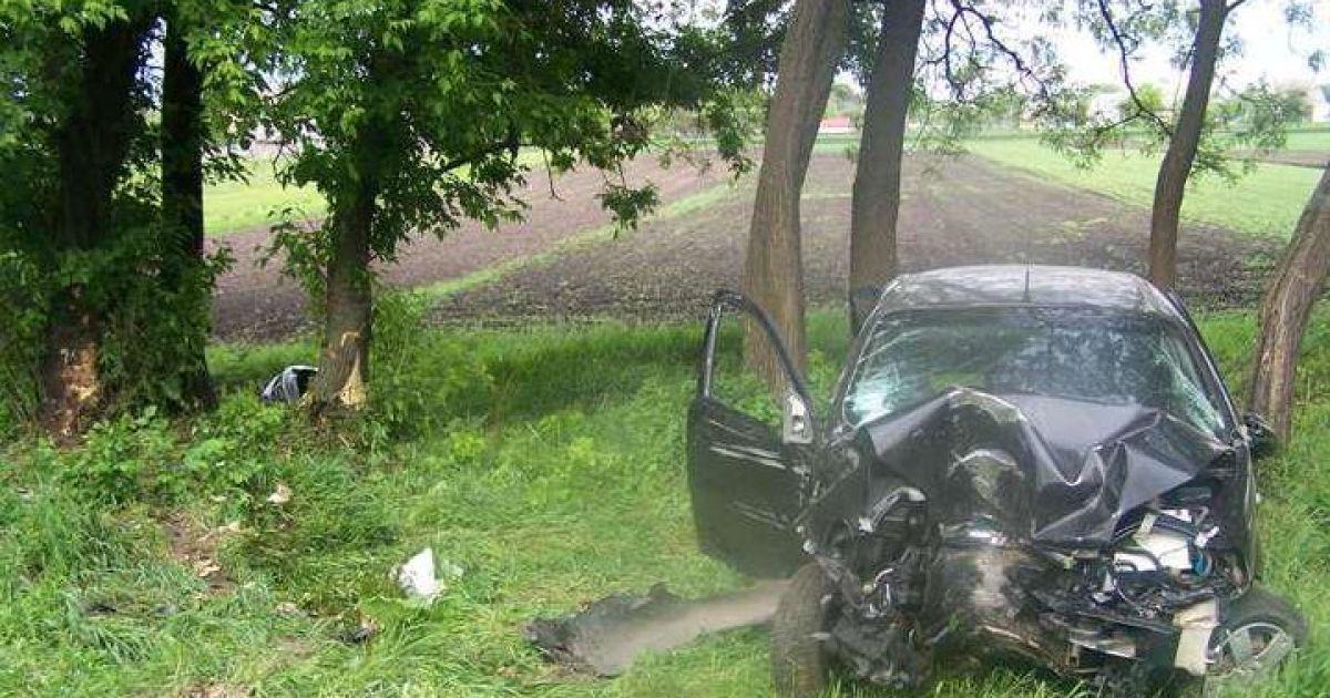 В г. Теберде водитель не справился с управлением и допустил наезд на дерево