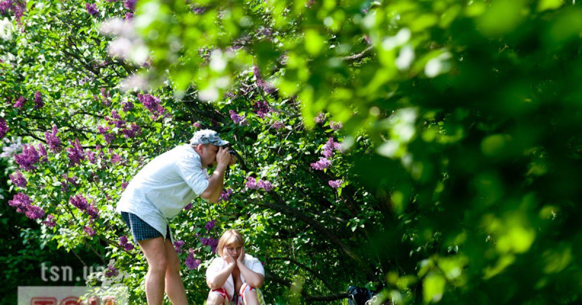 Ботанічний сад зачаровує відвідувачів квітучим морем бузку, магнолій та королівських тюльпанів @ Євген Малолєтка/ТСН.ua