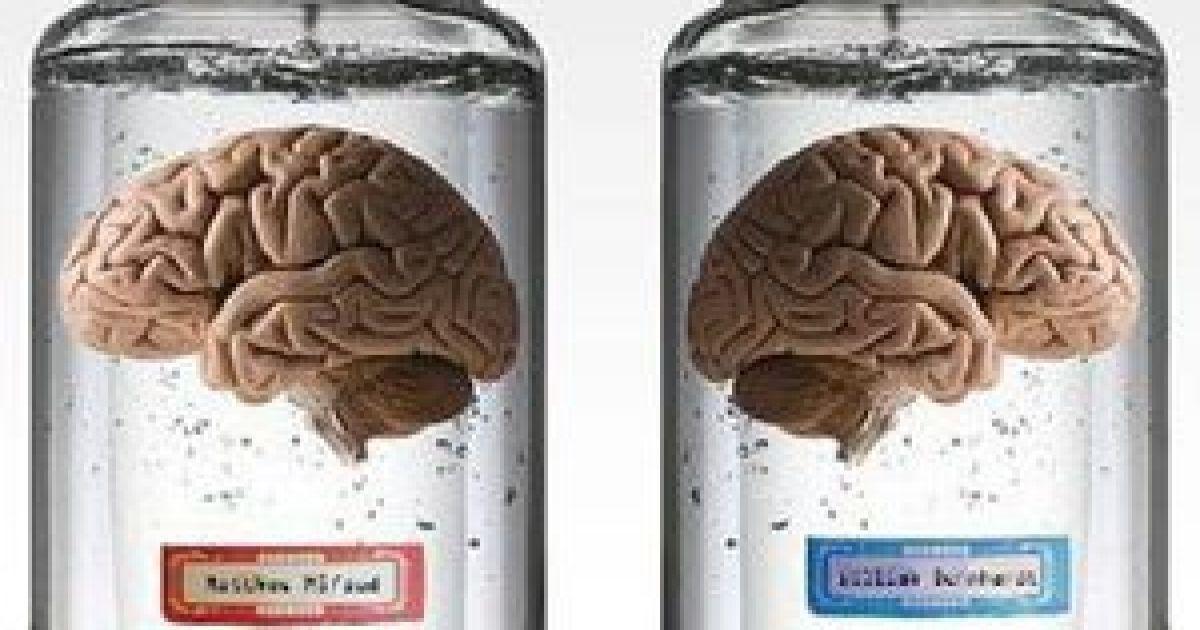спортсменов картинка мозг продается грань
