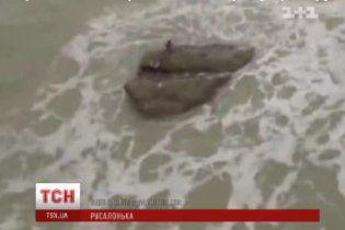 Туристи зняли на відео русалку, яка сиділа на камені в морі