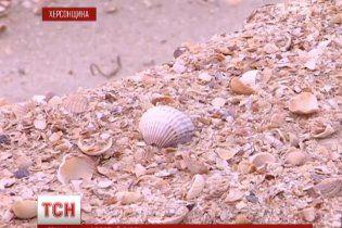 Азовское море может атаковать деревню на побережье, ведь неизвестные едва не украли песок с пляжа