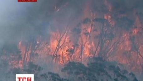 В Австралии пожарные пытаются потушить лесные пожары