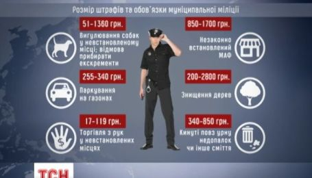 В Киеве может появиться муниципальная милиция