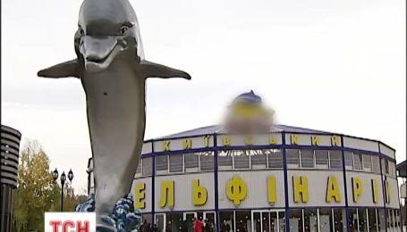 Экологи взялись за Киевский дельфинарий