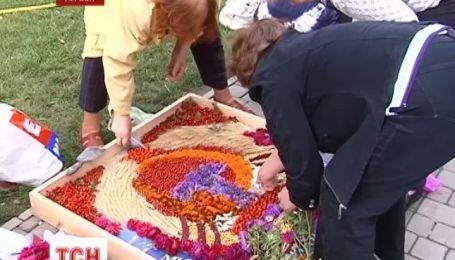 Херсон вкривається квітковими килимами на честь свого Дня народження