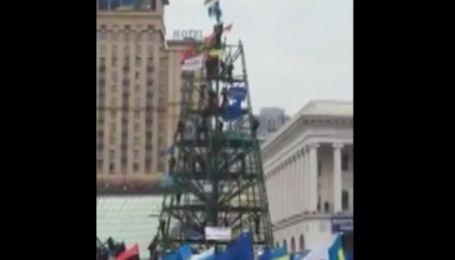 Митингующие на Майдане Независимости взяли елку в осаду