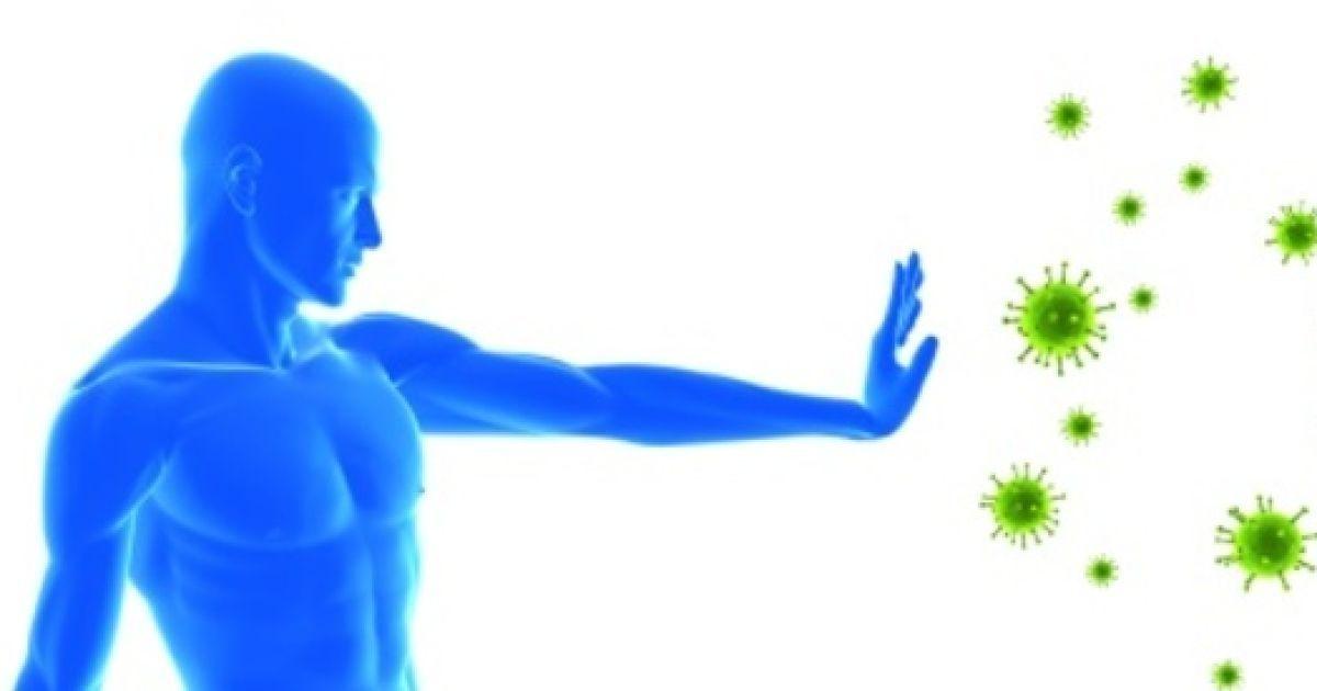 Влияние диеты на функционирование иммунной системы — imed guru.
