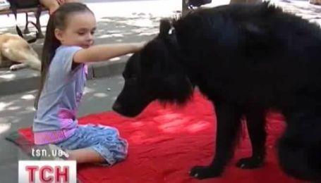 Общение с собаками разрушает все возможные комплексы ребенка