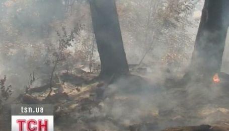 Пожар в Крымском заповеднике уже трое суток тушат огнеборцы