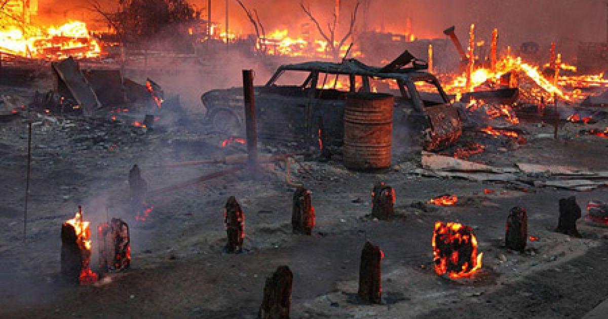 Вогонь знищив сотні гектарів лісів @ hvylya.org