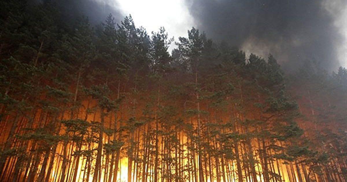 Росія, Долгініно. Ліс палає поблизу села Долгініно. Кількість загиблих в результаті лісових пожеж, які охопили низку регіонів Росії, зросла до 50 людей. У країні продовжують горіти більше п'ятисот вогнищ. У гасінні пожеж задіяні понад 170 тисяч людей, в тому числі армія та добровольці, 30 вертольотів та літаків. Природні пожежі через аномальну спеку та посуху зафіксовані у 17 регіонах РФ. У семи з них, у тому числі в Московській області, оголошено режим надзвичайної ситуації. Вогнем знищено майже 2 тисячі будинків, без даху над головою залишилися понад 3,5 тисяч людей. @ AFP